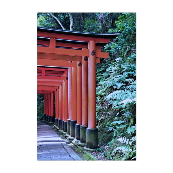 Inari Gates Galore by Julie Maxwell