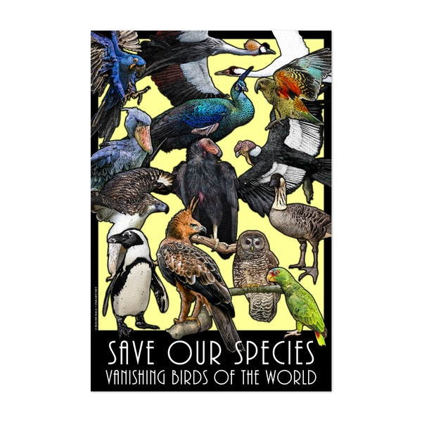 Save Our Species - Vanishing Birds by Roger Hall