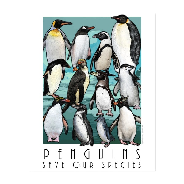 Penguins by Roger Hall