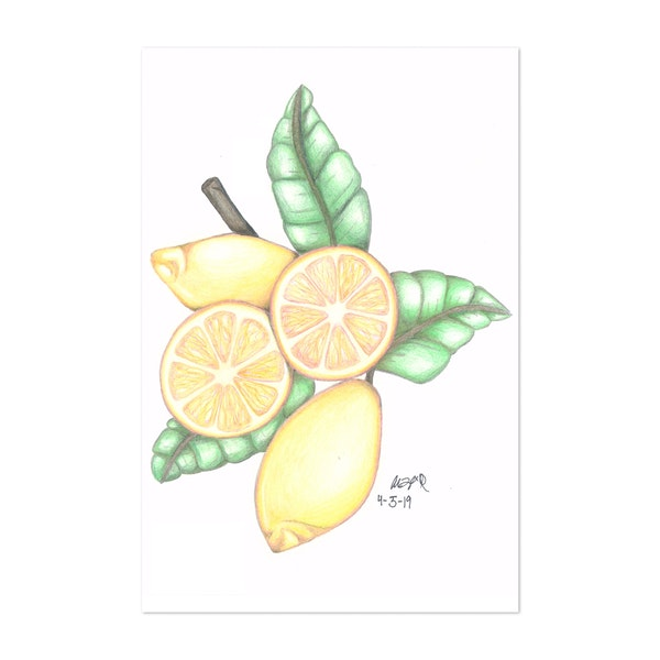 Lemons by Alison Love