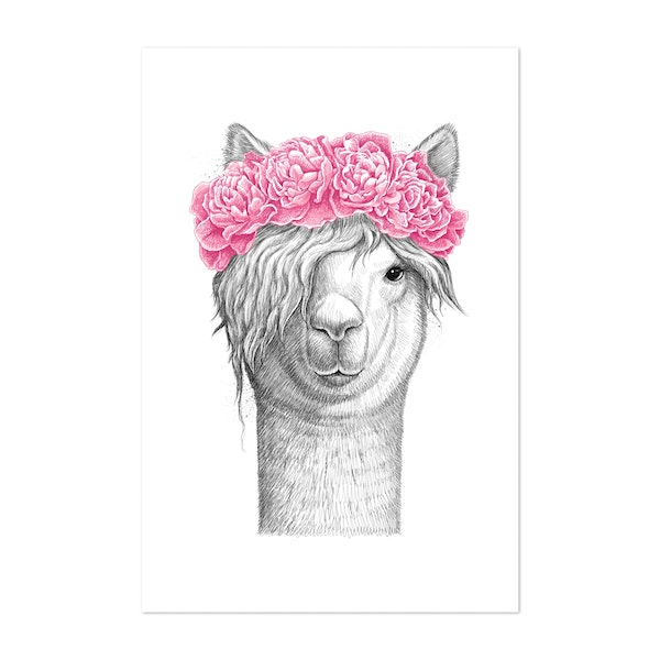 Llama with peonies by NikKor