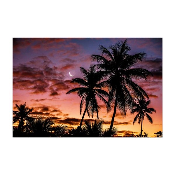 Tropic Sunrise by Jared Jeffs