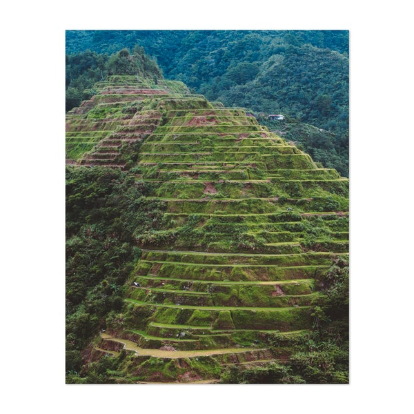 Banaue Rice Terraces by Andrew Haimerl