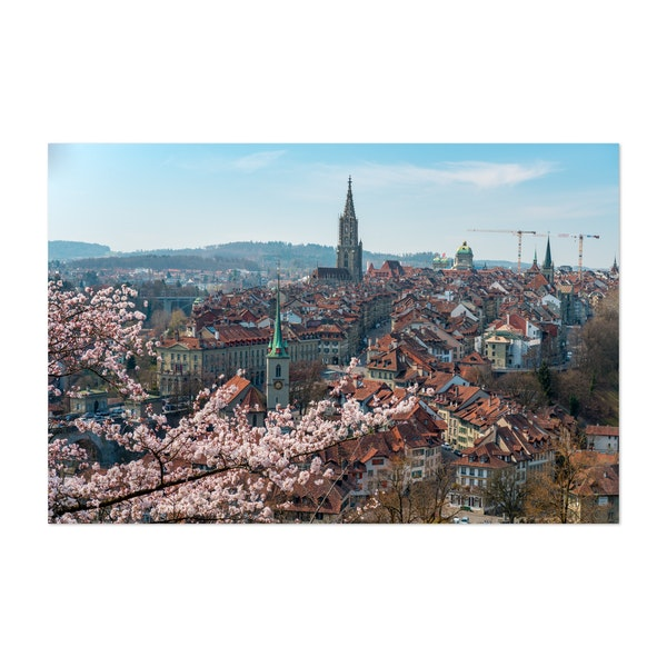 Cherry blossom in Bern by Marcel Gross