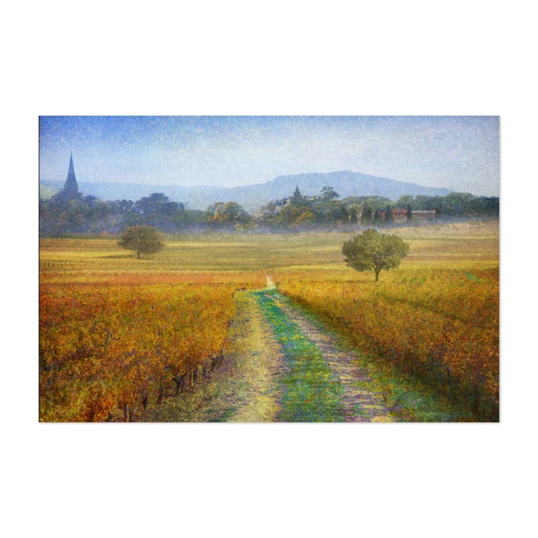 vineyards with village by R. Christopher Vest