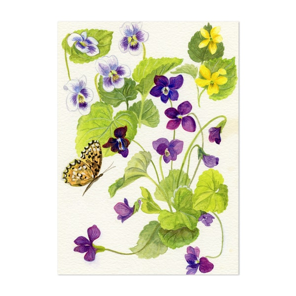 Wild Violets and Silver Bordered Fritillary Butterfly by Patricia Bilous