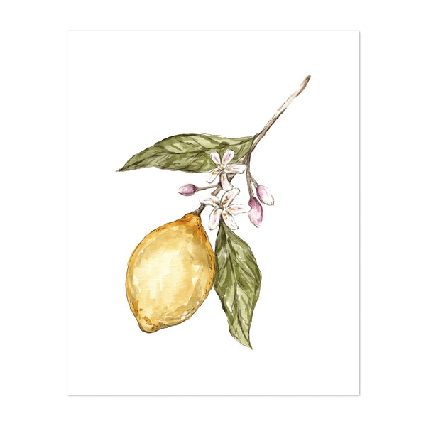 Lemon Floral Watercolor Painting by The Cranberry Finch