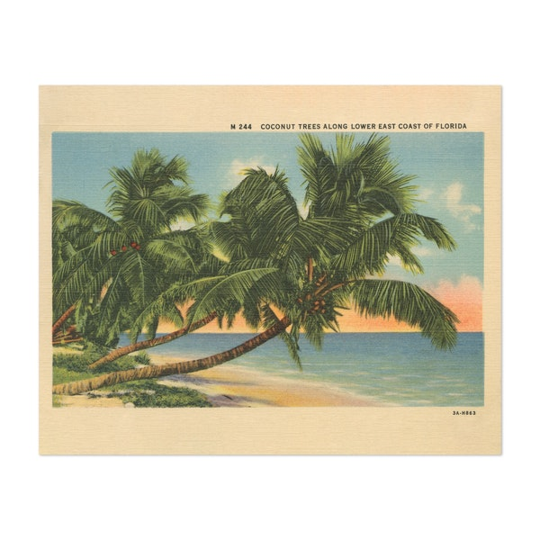 Florida Postcard III by Wild Apple Portfolio