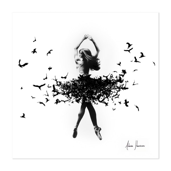 Free Bird Dance by Ashvin Harrison