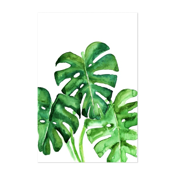 Watercolor Monstera Leaves by blursbyai