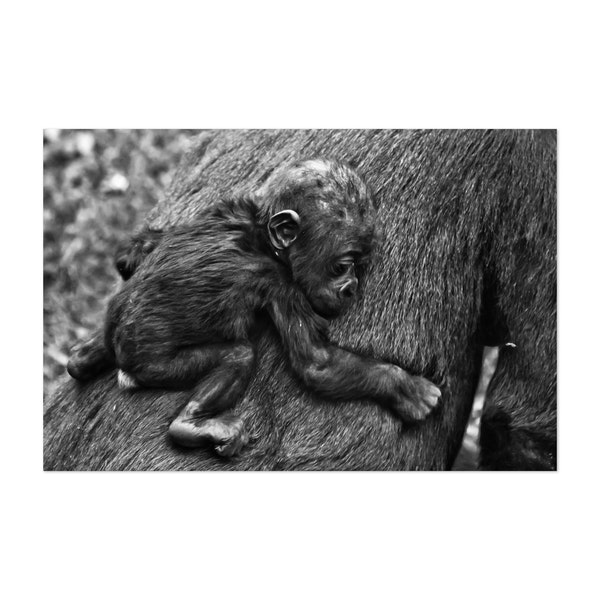 small infant baby on his mother's fur, by Mikhail Semenov