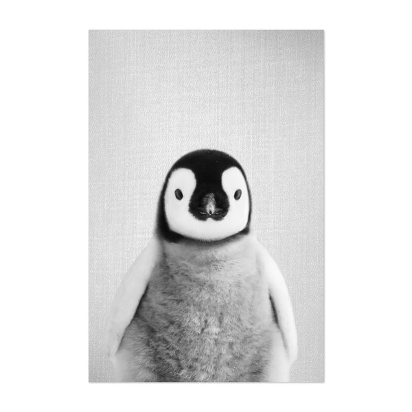 Baby Penguin - Black & White by Gal Design