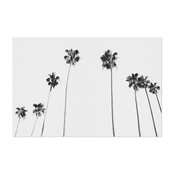 Black And White Palms by Gal Design