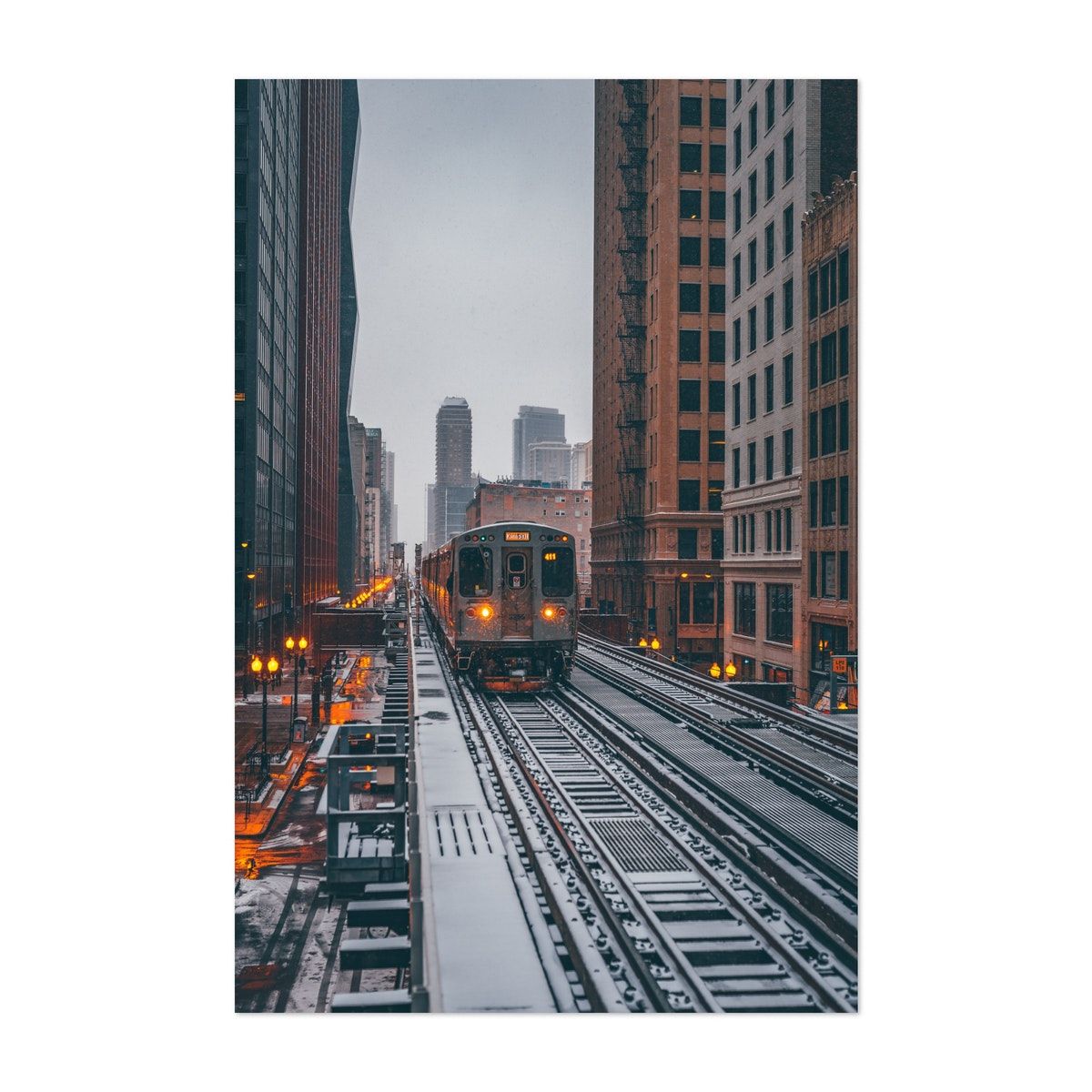 Brown Line in the Snow