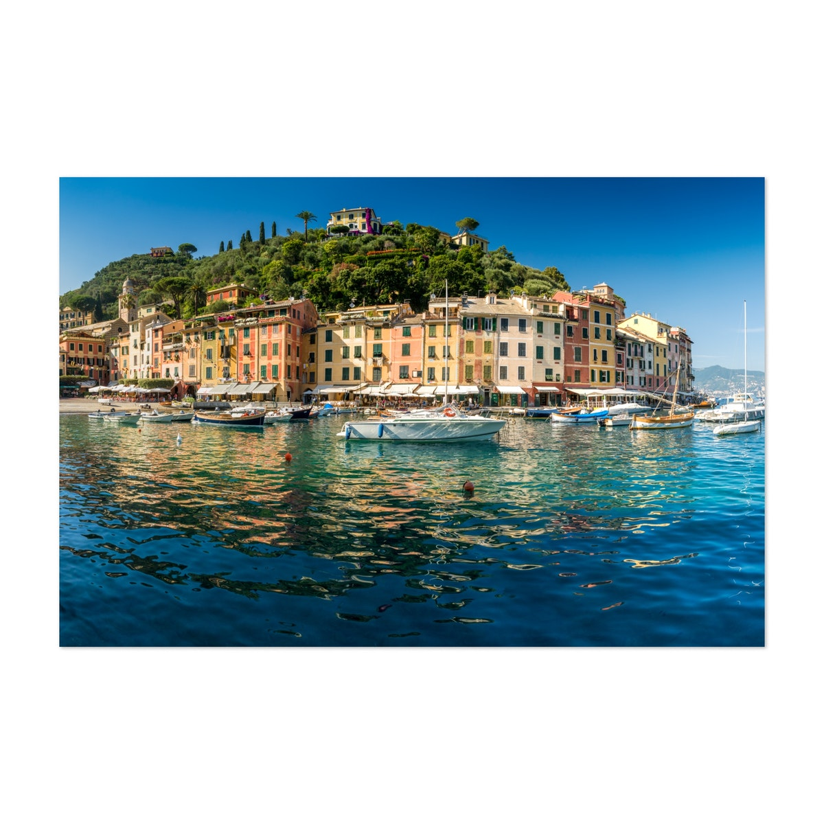 Harbour Of Portofino