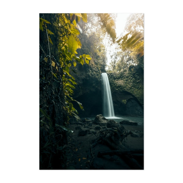 Jungle Waterfall by Alexander Neimert