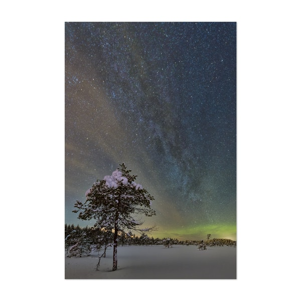 Starry Winter Night by Ulf Asplund
