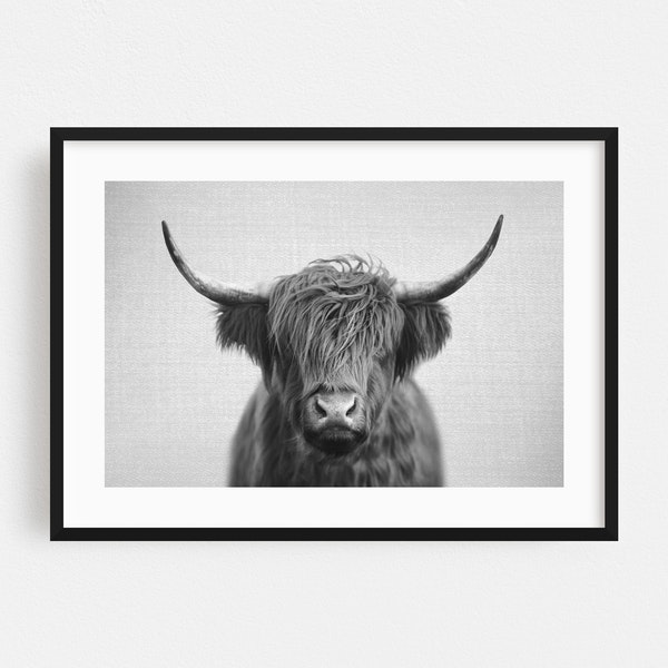 Highland Cow - Black & White by Gal Design